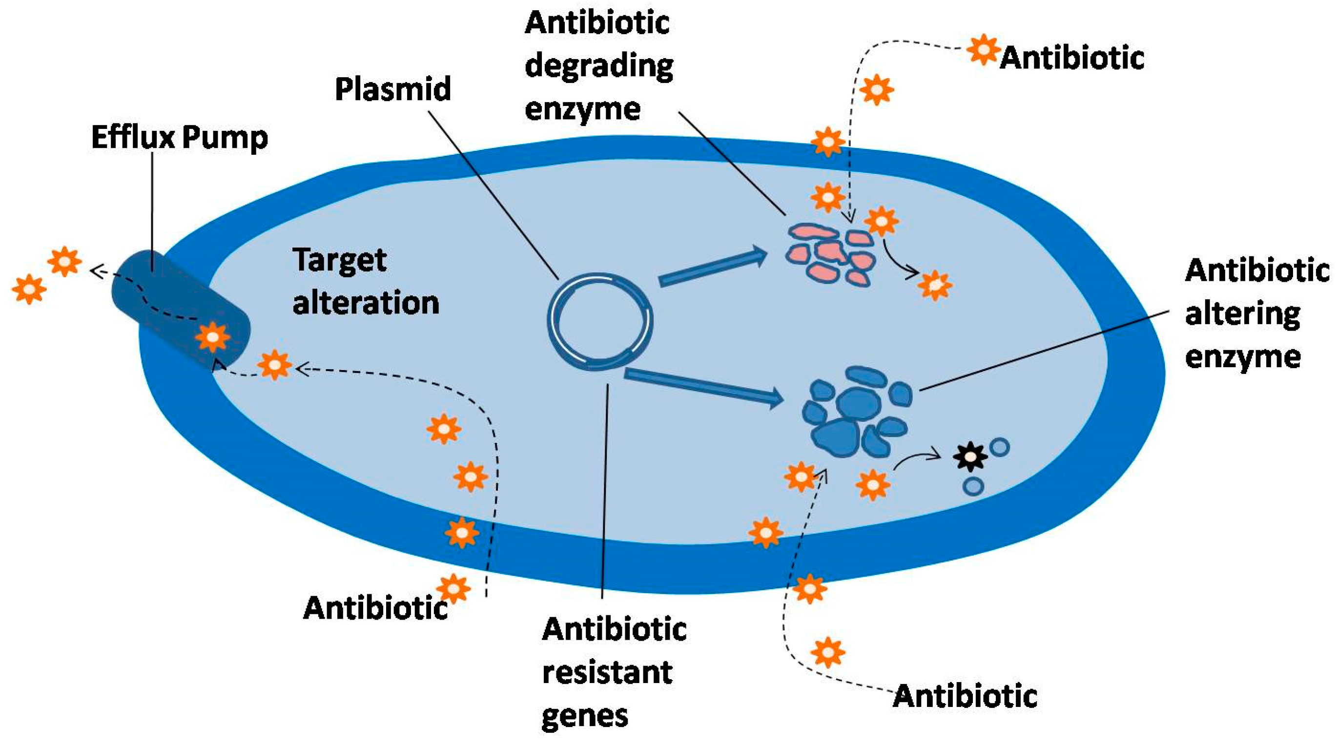 plants full text antimicrobial resistance and the no