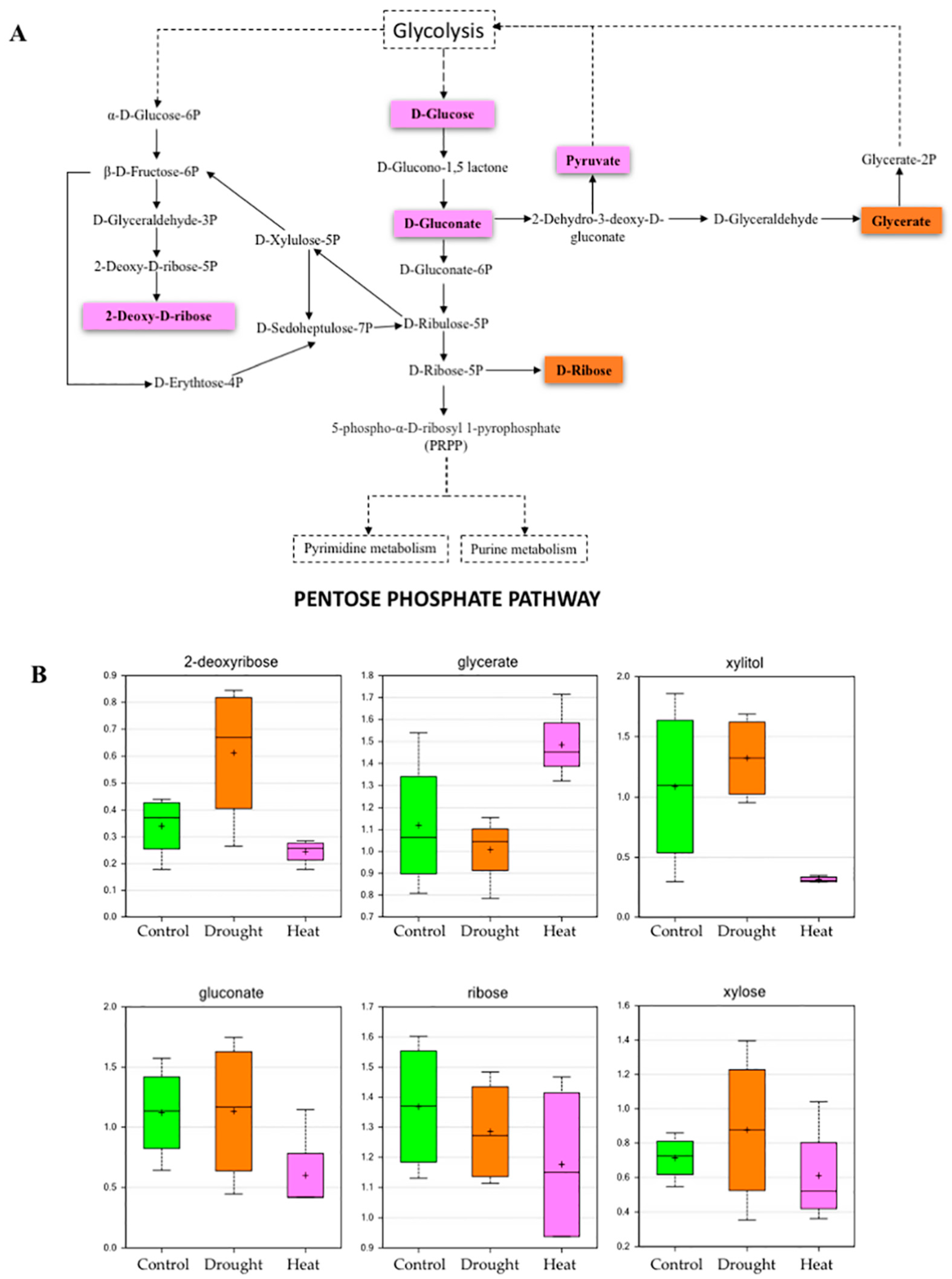 Plants free full text metabolomic profiling of soybeans plants 06 00021 g003 nvjuhfo Images