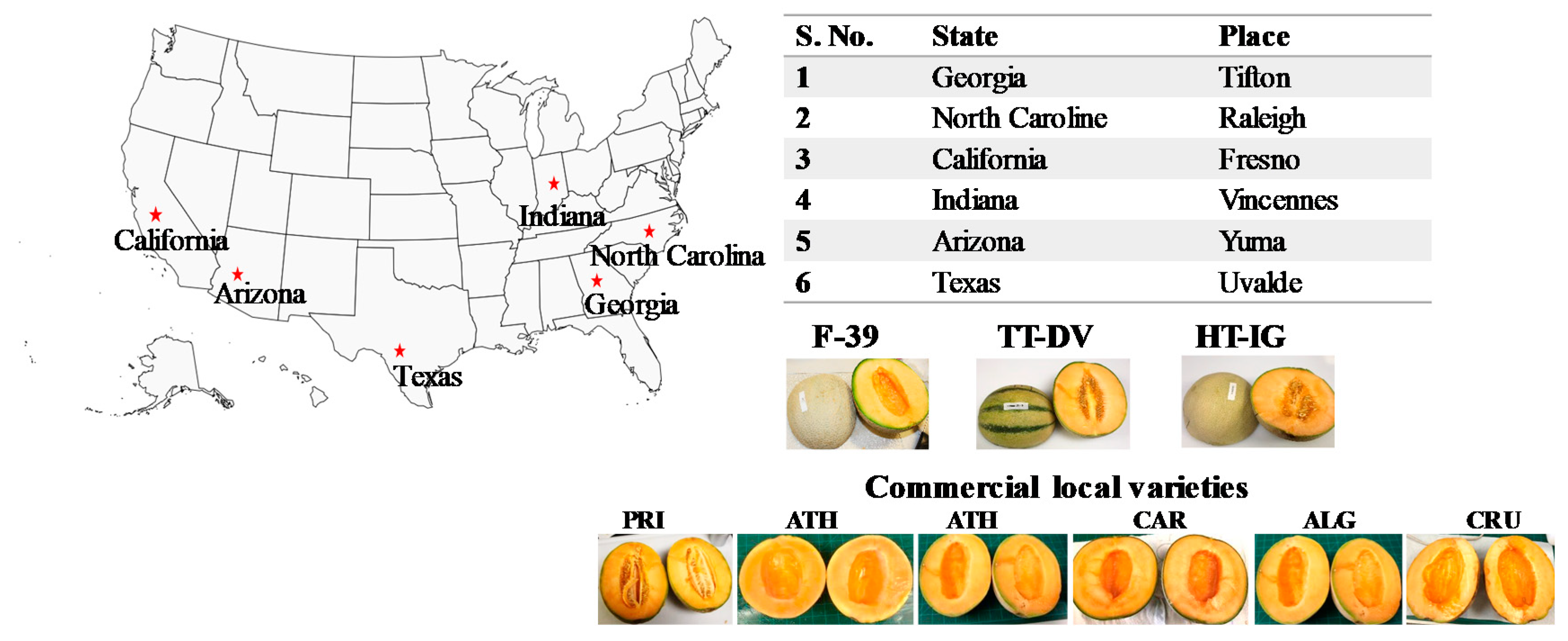 Plants Free Full Text Multivariate Analysis Of Amino Acids And Health Beneficial Properties Of Cantaloupe Varieties Grown In Six Locations In The United States Cantaloupes are also commonly known as muskmelons, mush melons, rock melons and persian. multivariate analysis of amino acids