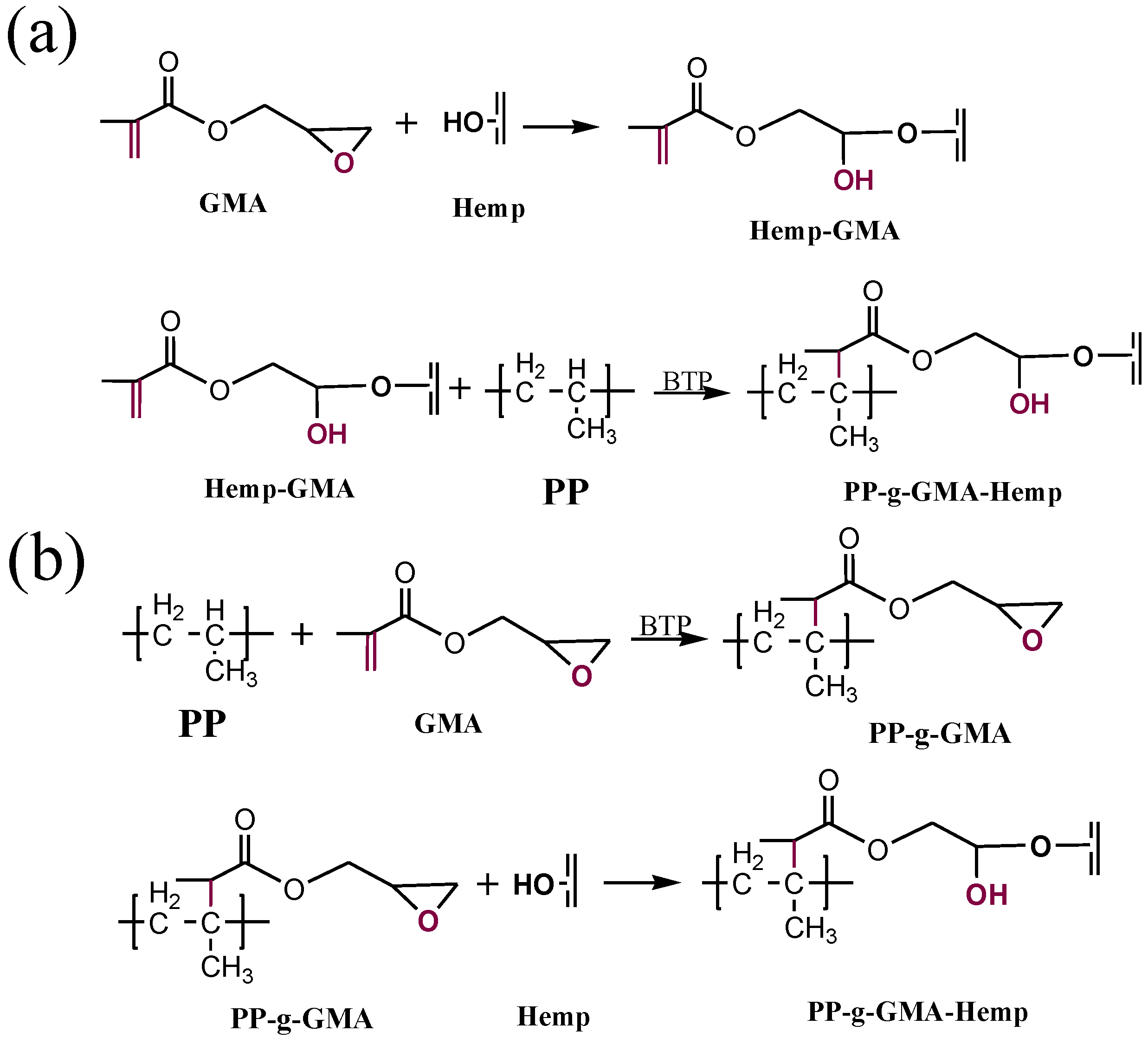 Polymers Free Full Text Functionalization