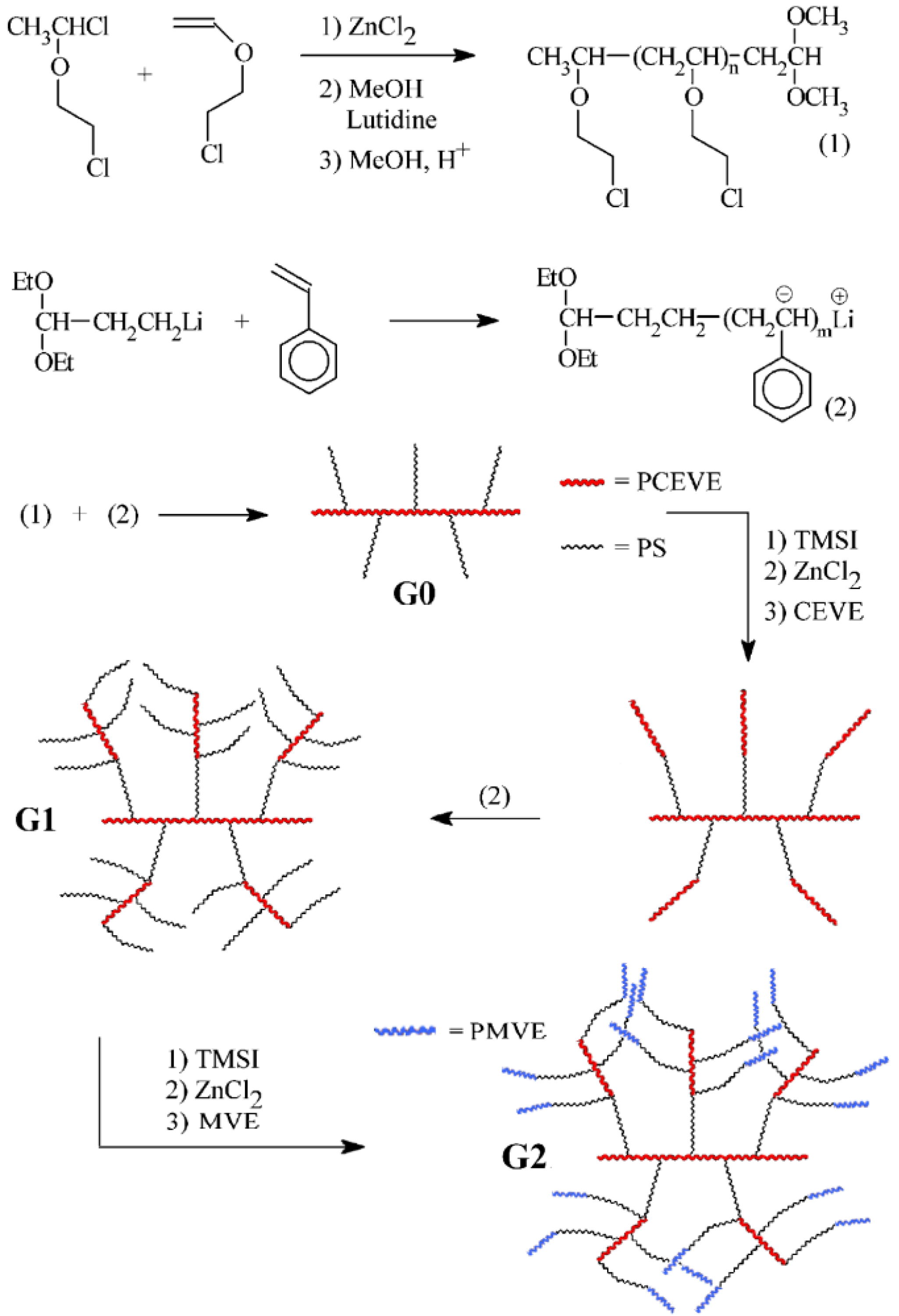 Polymers Free Full Text Phase Segregated Dendrigraft