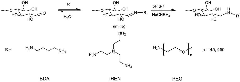 efficiencies of reductive amination reactions on The general process of copper-catalyzed amination reactions involves coordination of the nucleophile to the metal center, activation of the c–x bond, and c–n bond .