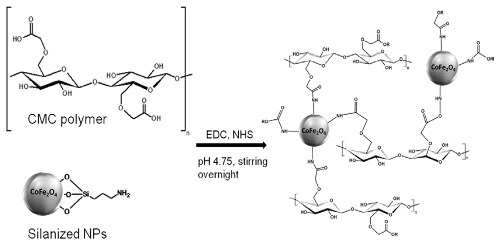 sythesis characterization Wwwmdpiorg/ijms/ synthesis and characterization of molecularly imprinted  polymers for phenoxyacetic acids huiting zhang 1, tao song 2,.
