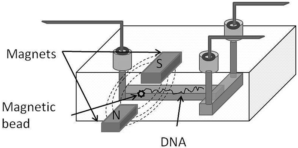 microfluidics thesis