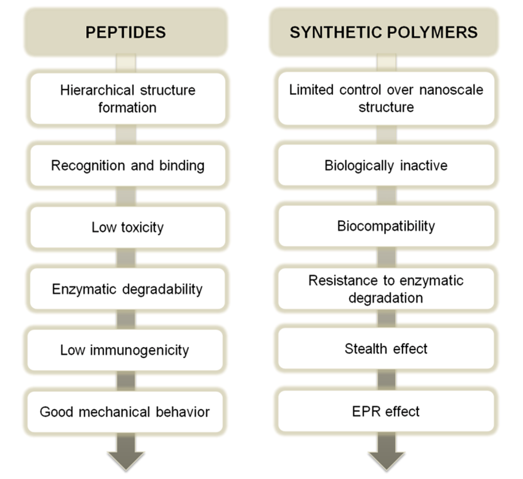 synthetic polymers Making polymers from scratch - the lab guys cook up some goo when we couldn't buy enough silk or rubber that we needed another way that natural polymers influenced synthetic polymers was during shortages, like during world war ii when there wasn't enough silk or rubber to go around because we were at war with the countries that produced them.