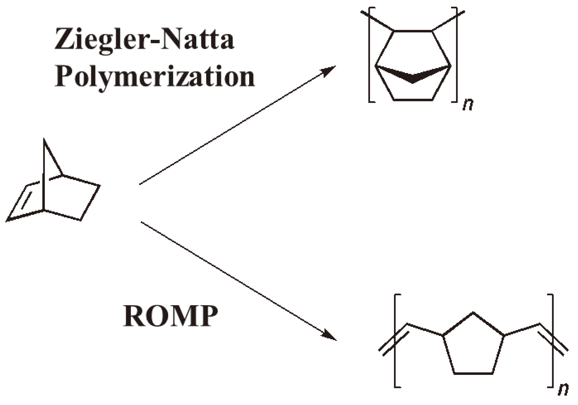 ring opening olefin metathesis polymerization Reported here are some results of rapid ring opening metathesis  polymerization (romp) of norbornene-functional oligomeric siloxanes using a  ru-based.