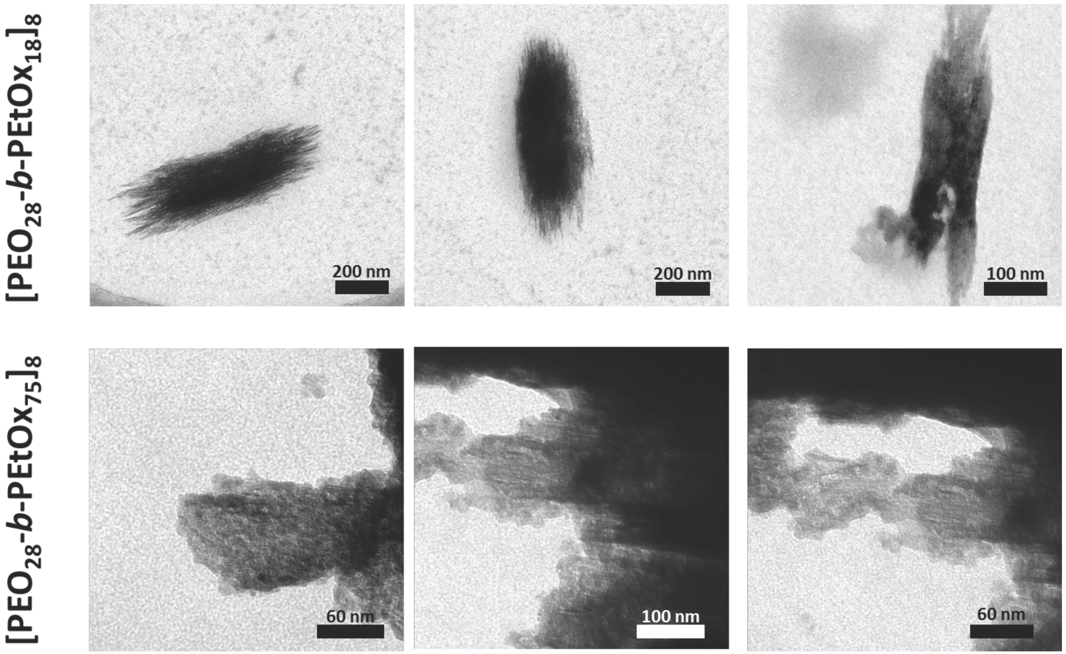 Polymers free full text synthesis and solution properties of no fandeluxe Images