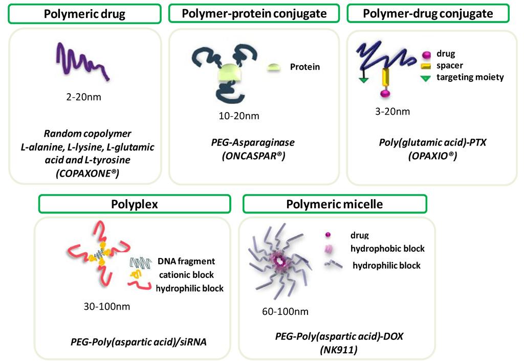 Polymers Free Full Text Peptide Based Polymer Therapeutics