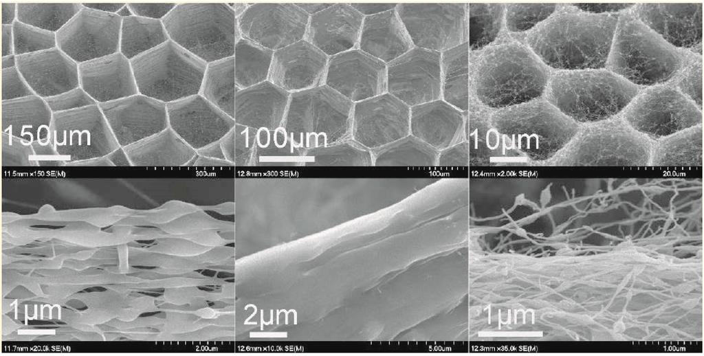Polymers Free Full Text Multifunctional Nanofibers