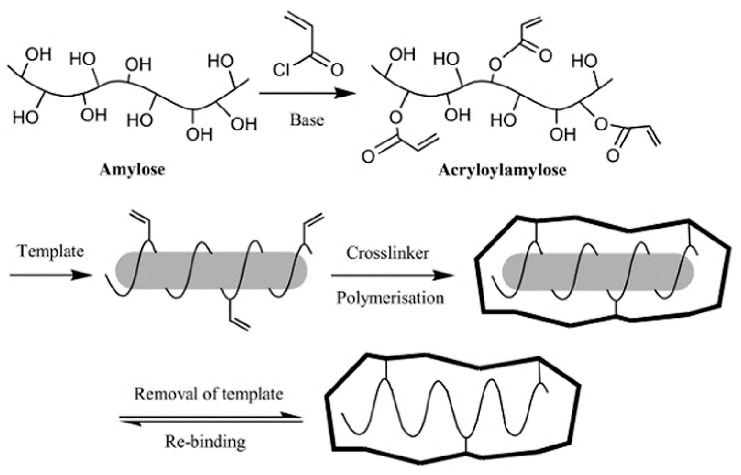 Polymers | Free Full-Text | Molecularly Imprinted Polymers with ...