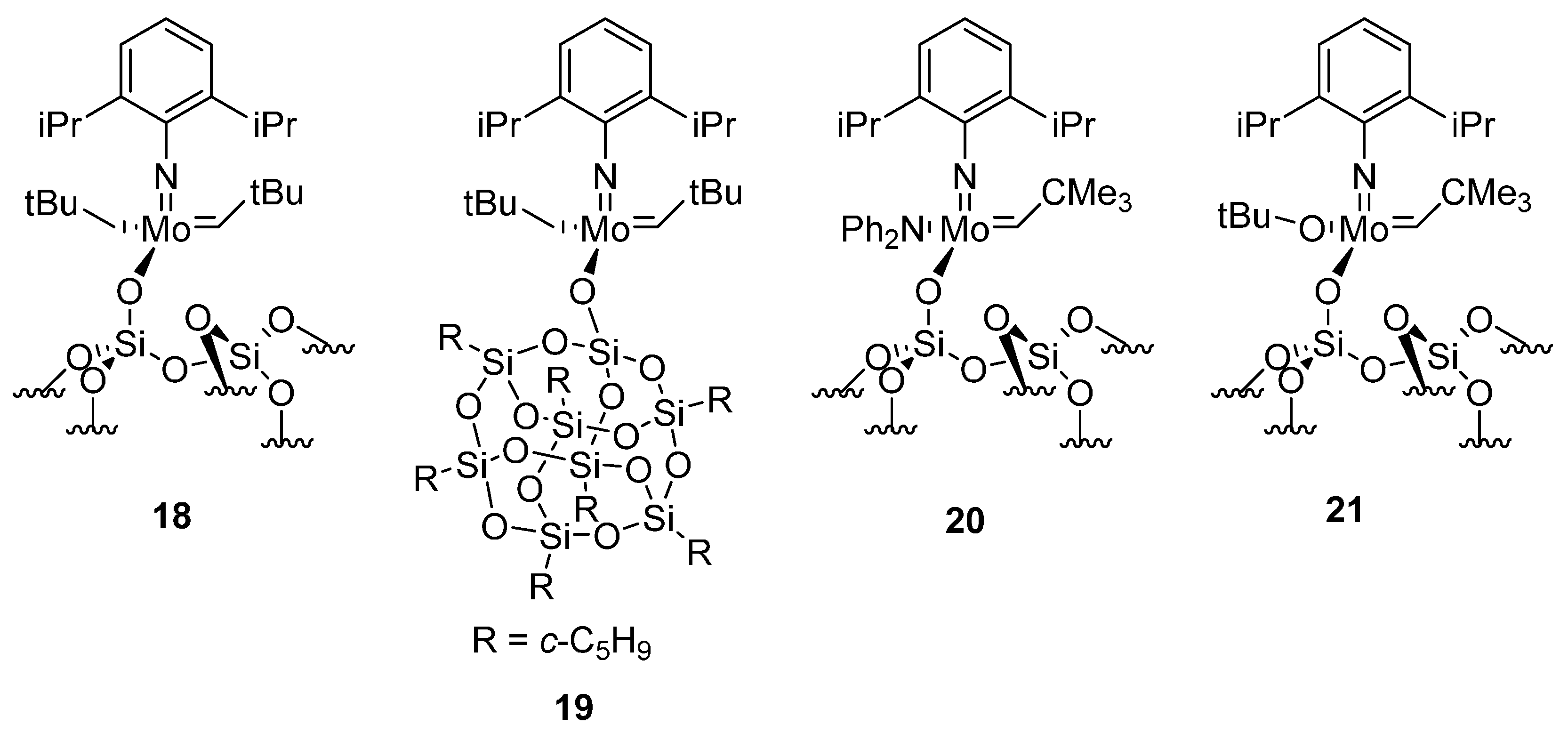 Polymers Free Full Text Supported Catalysts Useful In Ring