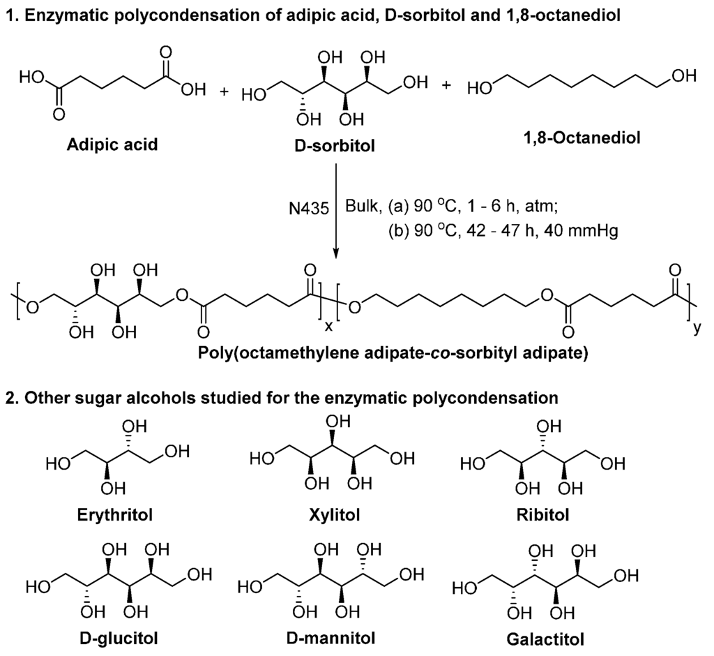 Synthesis of adipic acid