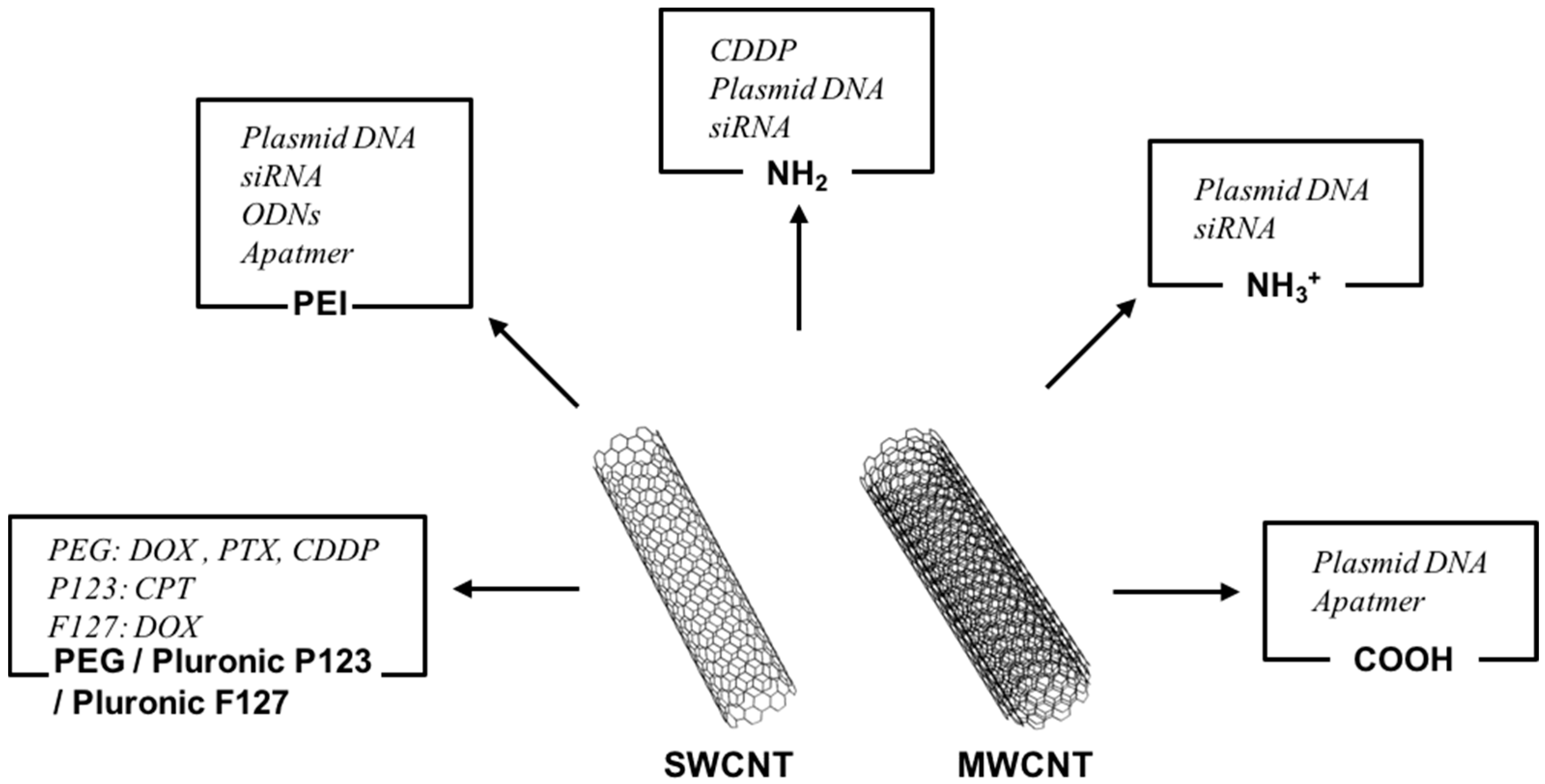 Polymers Free Full Text Applications Of Functionalized Carbon Microphone Circuit 09 00013 G001
