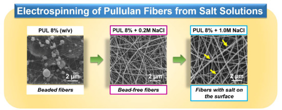 electrospinning for encapsulating functional ingredients Read electrospinning: a facile technique for fabricating functional nanofibers for environmental applications, nanotechnology reviews on deepdyve, the largest online rental service for scholarly research with thousands of academic publications available at your fingertips.