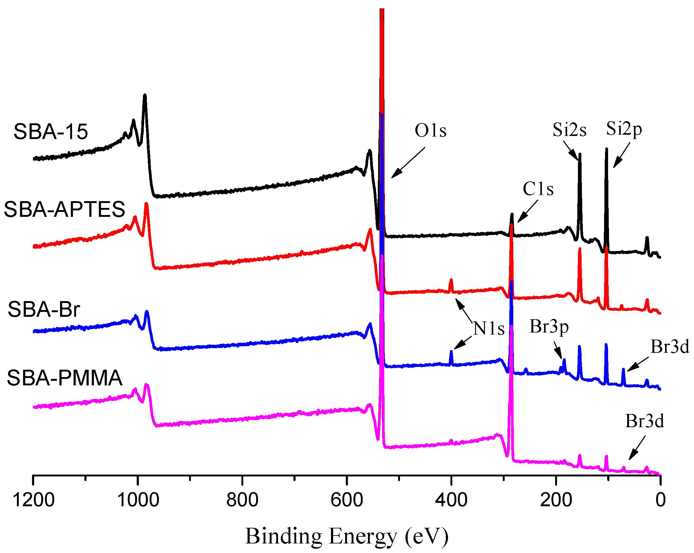 atom transfer radical polymerization pdf
