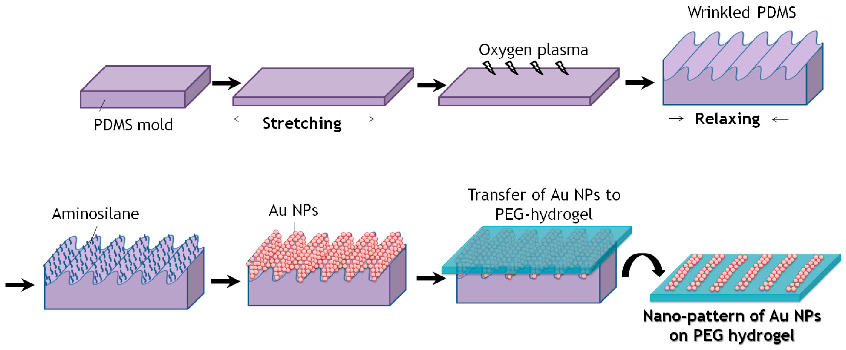 polymers-09-00199-g002 Afm Schematic on