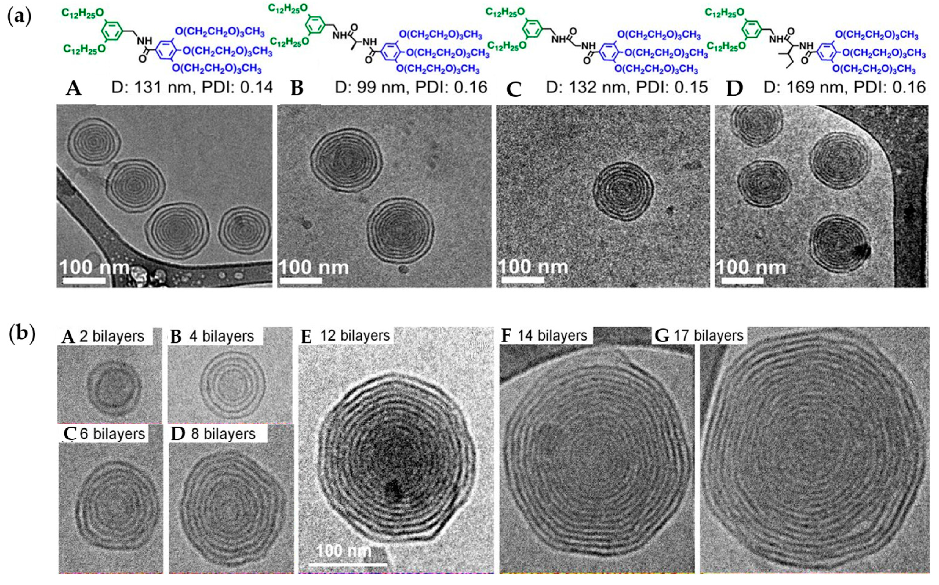 Polymers | Free Full-Text | Vesicles from Amphiphilic Dumbbells and