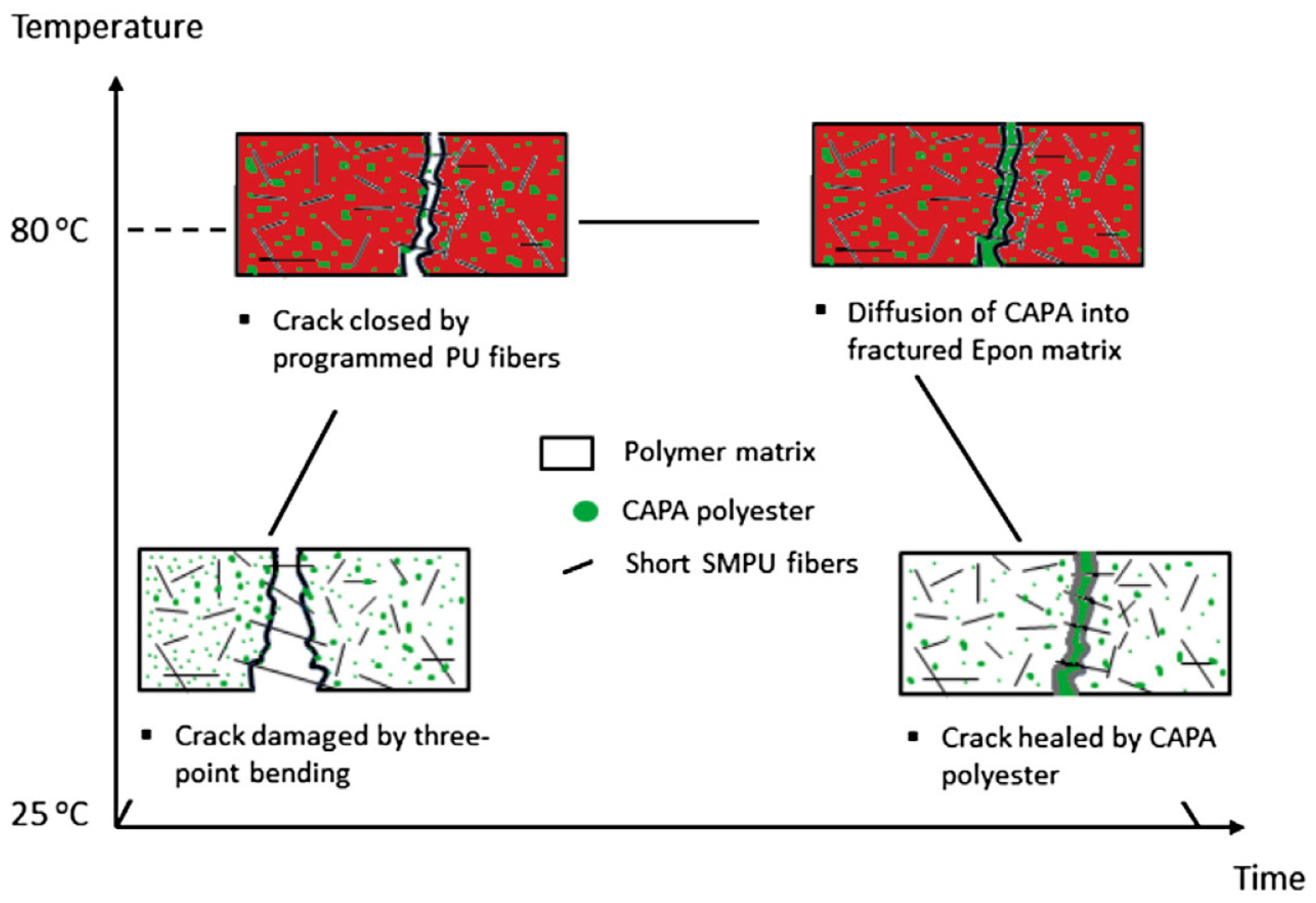 Polymers | Free Full-Text | Review of Progress in Shape Memory ...