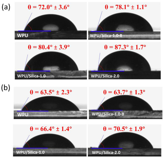 vincentz network seminare