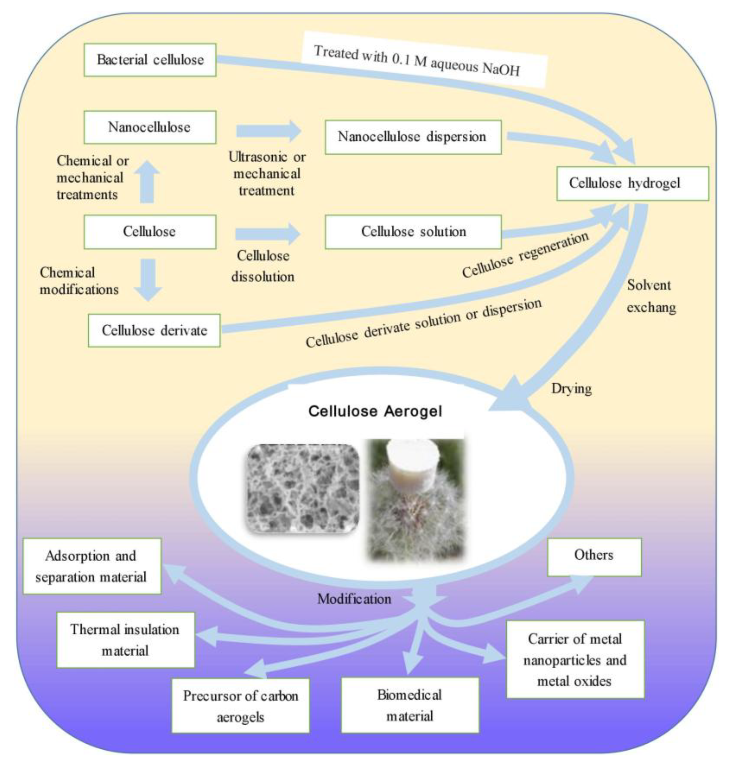 Polymers | Free Full-Text | Cellulose Aerogels: Synthesis