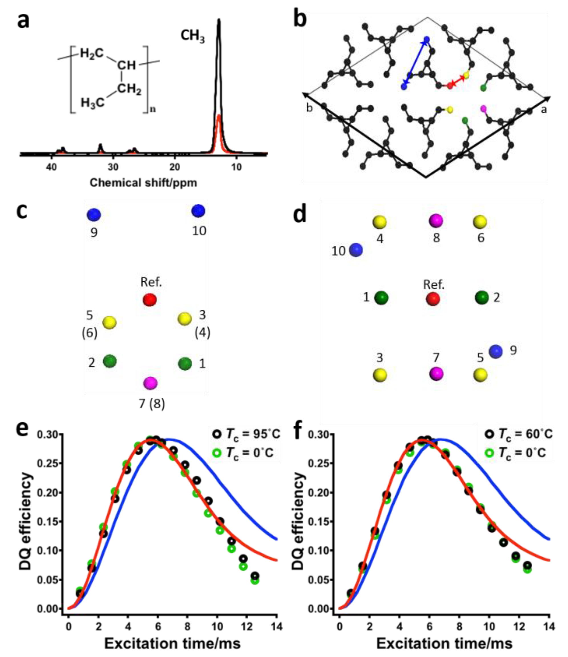 Solid State NMR Studies of Biopolymers