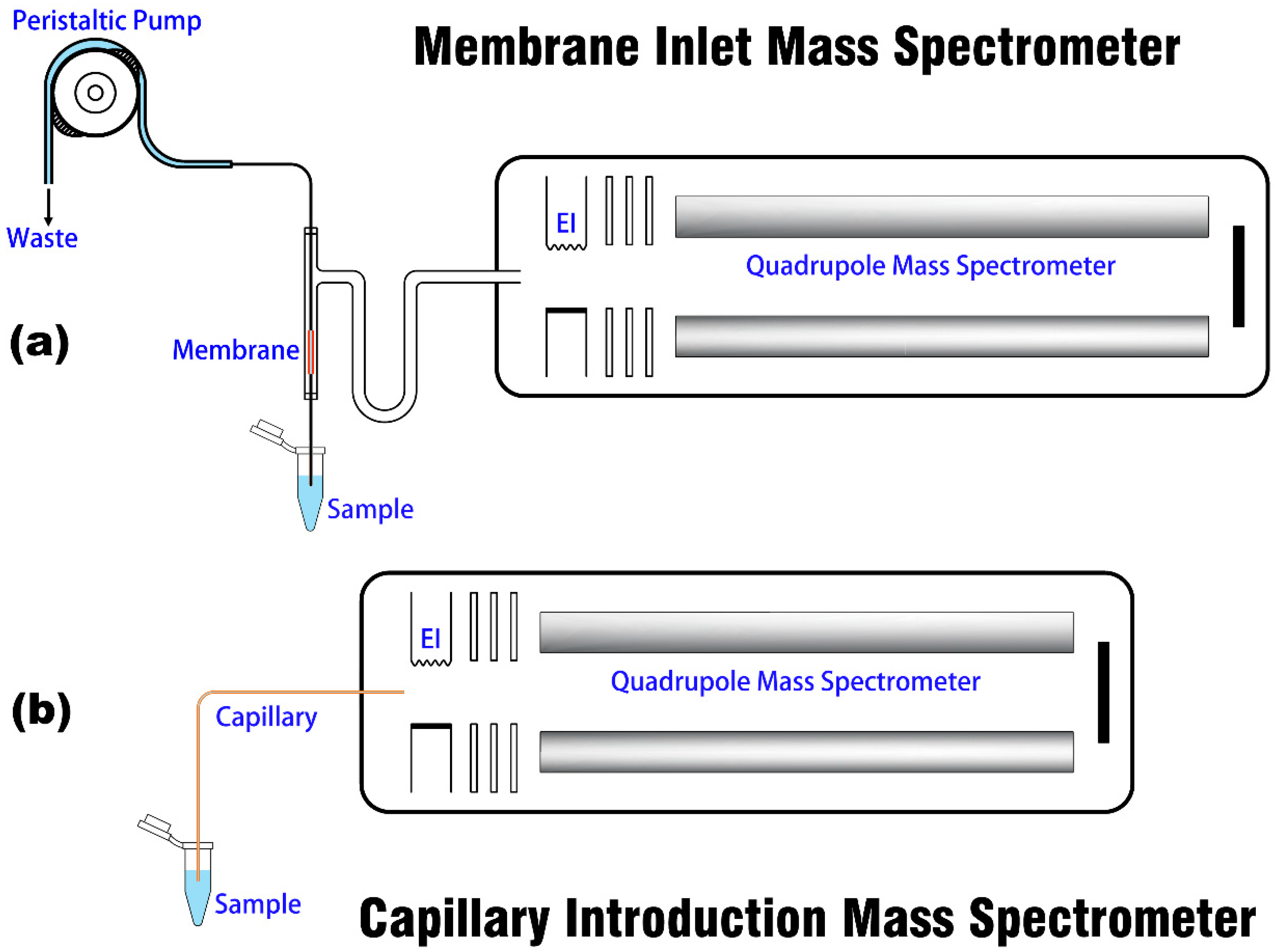(PDF) Water solubilization of ethanol and BTEX from ... |Membrane Introduction Mass Spectrometry