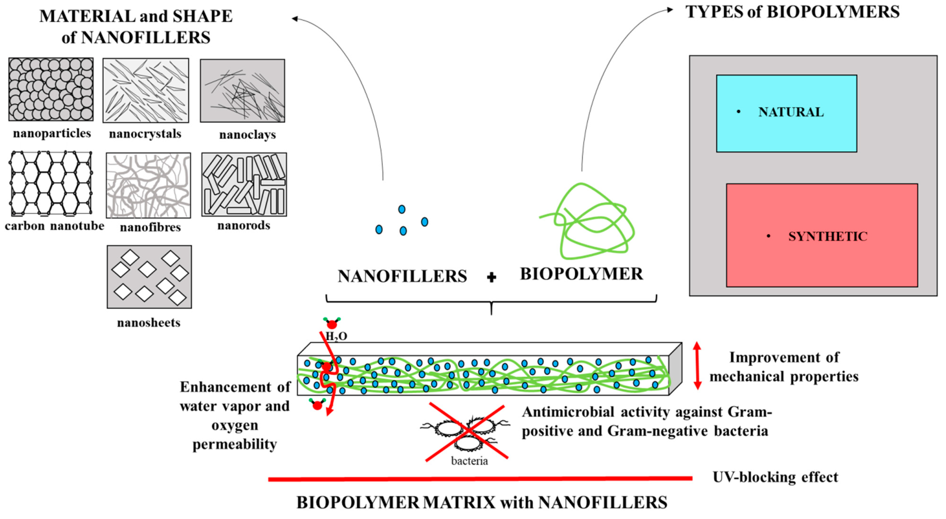 Polymers | Free Full-Text | The Effect of Nanofillers on the