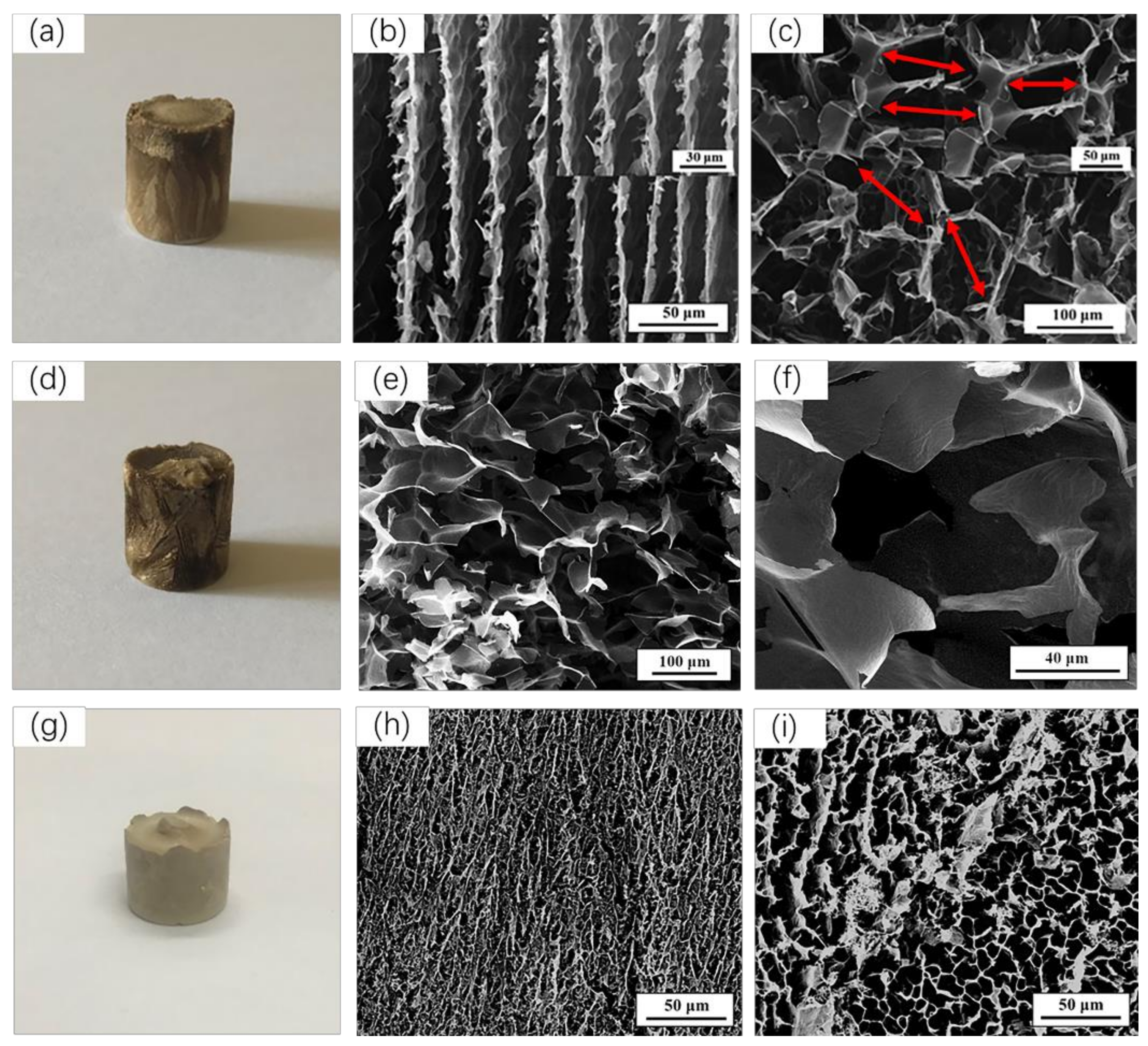 Polymers | Free Full-Text | Anisotropic Cellulose Nanofibers