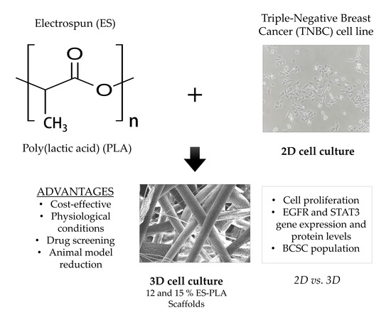 Polymers | Special Issue : Polymer Scaffolds for Biomedical