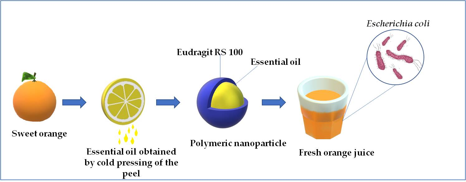 Polymers | Free Full-Text | Essential Oils-Loaded Polymer Particles