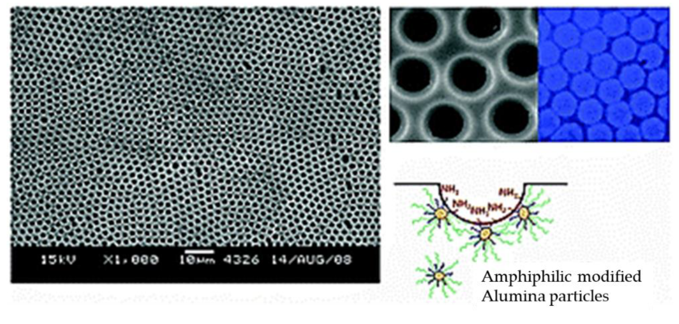 Polymers   Free Full-Text   In Search of a Green Process