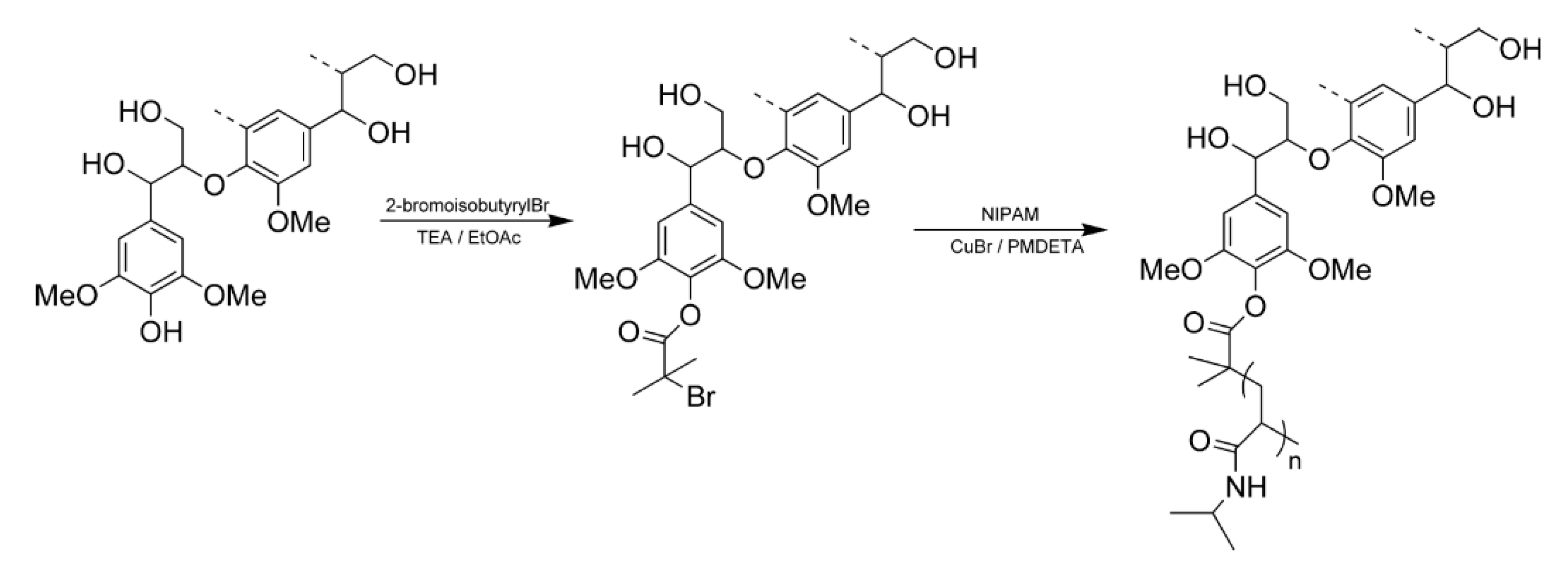 Polymers Free Full Text Insights Into The Potential Of Hardwood Kraft Lignin To Be A Green Platform Material For Emergence Of The Biorefinery Html