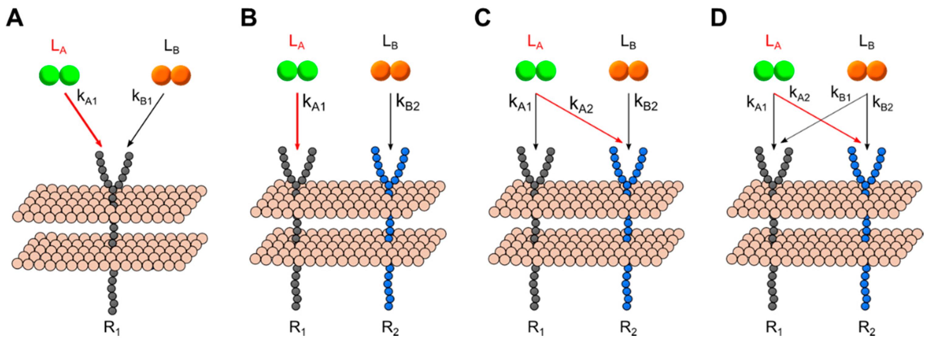 Processes | Free Full-Text | Mapping Tyrosine Kinase Receptor