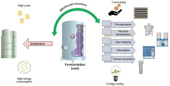Processes | Free Full-Text | Overview of Alternative Ethanol Removal