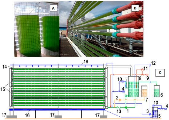 Processes Free Full Text Outdoor Large Scale Cultivation Of The Acidophilic Microalga Coccomyxa Onubensis In A Vertical Close Photobioreactor For Lutein Production Html