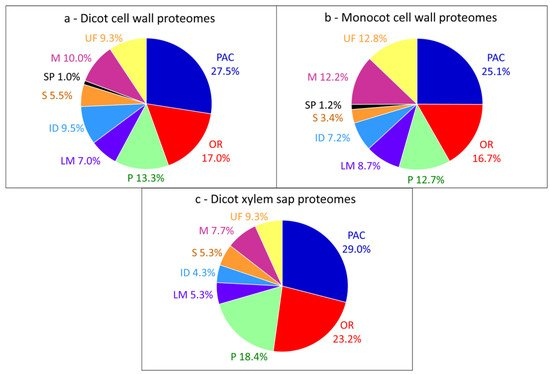Plant Cell Wall Proteins: A Large Body of Data, but What about Runaways