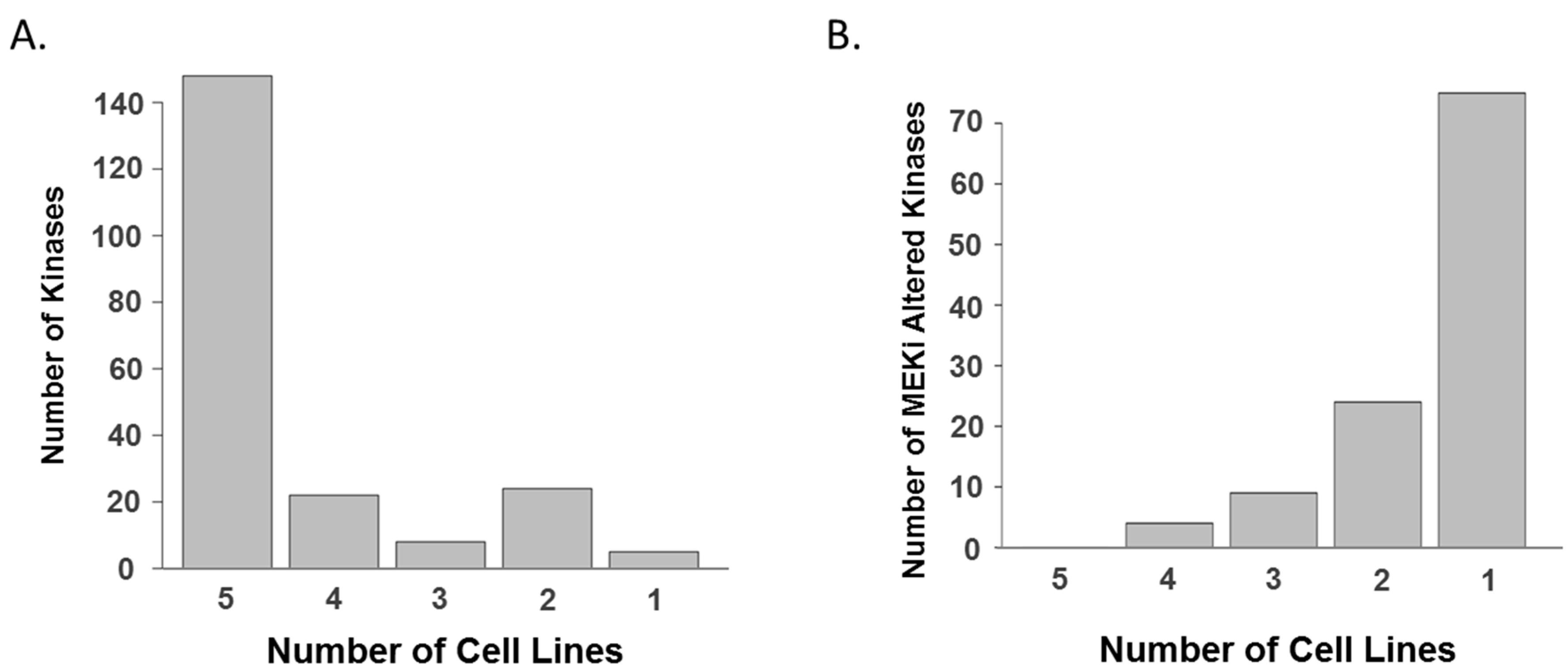 mutation kras melanoma cell line