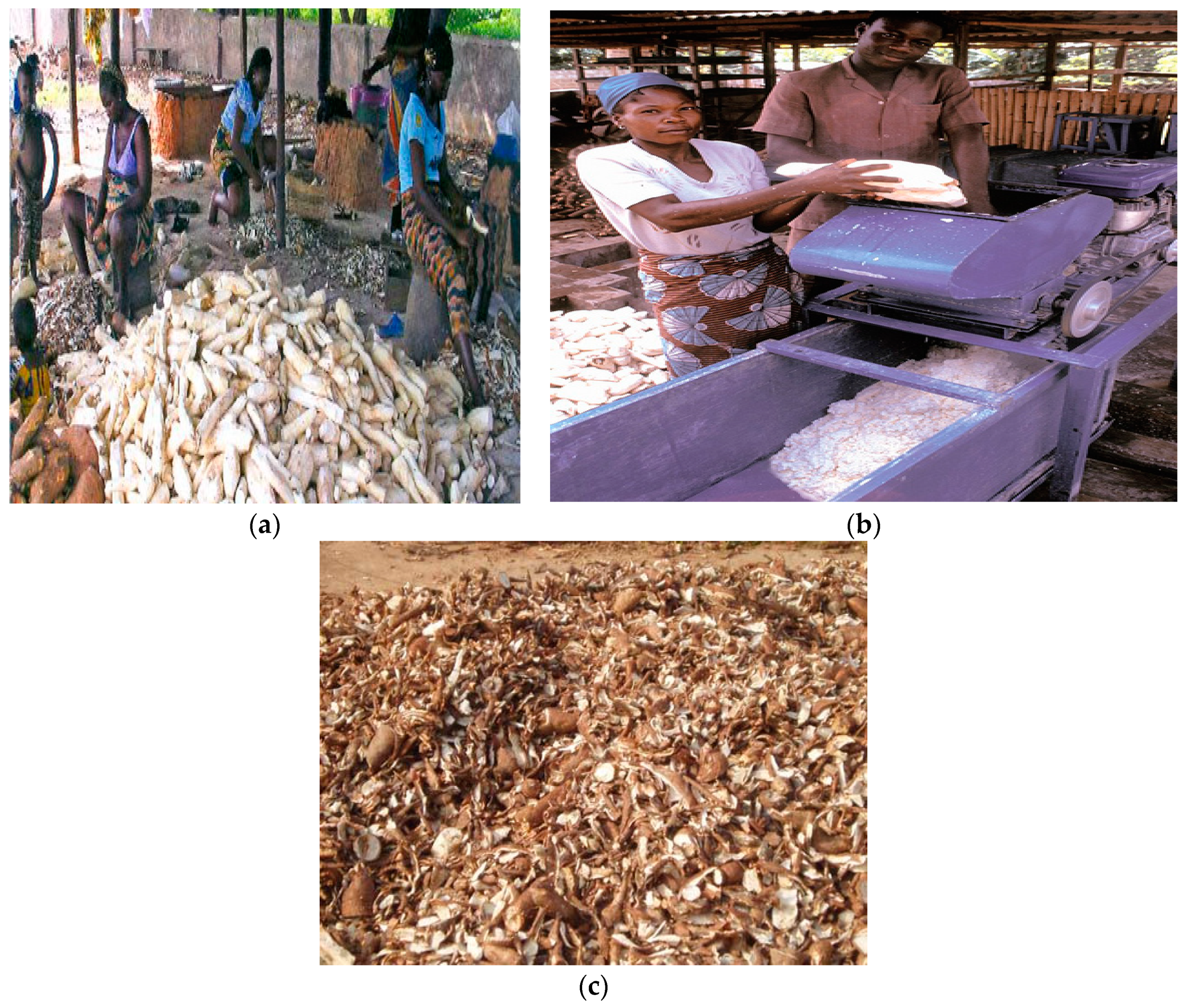 Recycling | Free Full-Text | Cassava Waste Management and