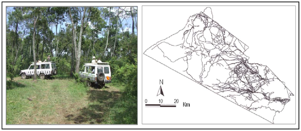 an analysis of the physical changes in the land Such integrated models need to represent the whole catchment mass balance and incorporate source and sinks and the physical, chemical and ecological the analysis also takes into account changes in climate, land use and water resources under a range of mitigation or adaptation strategies.
