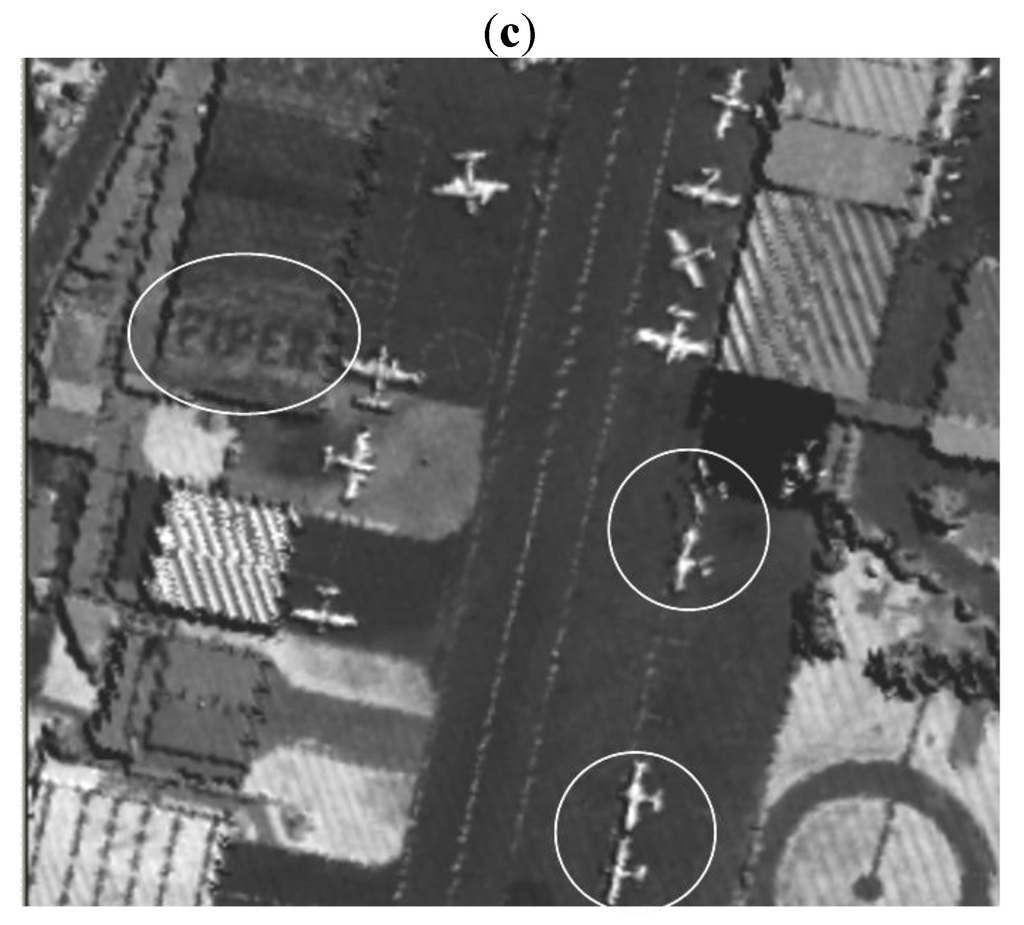 Remote Sensing   March 2010 - Browse Articles