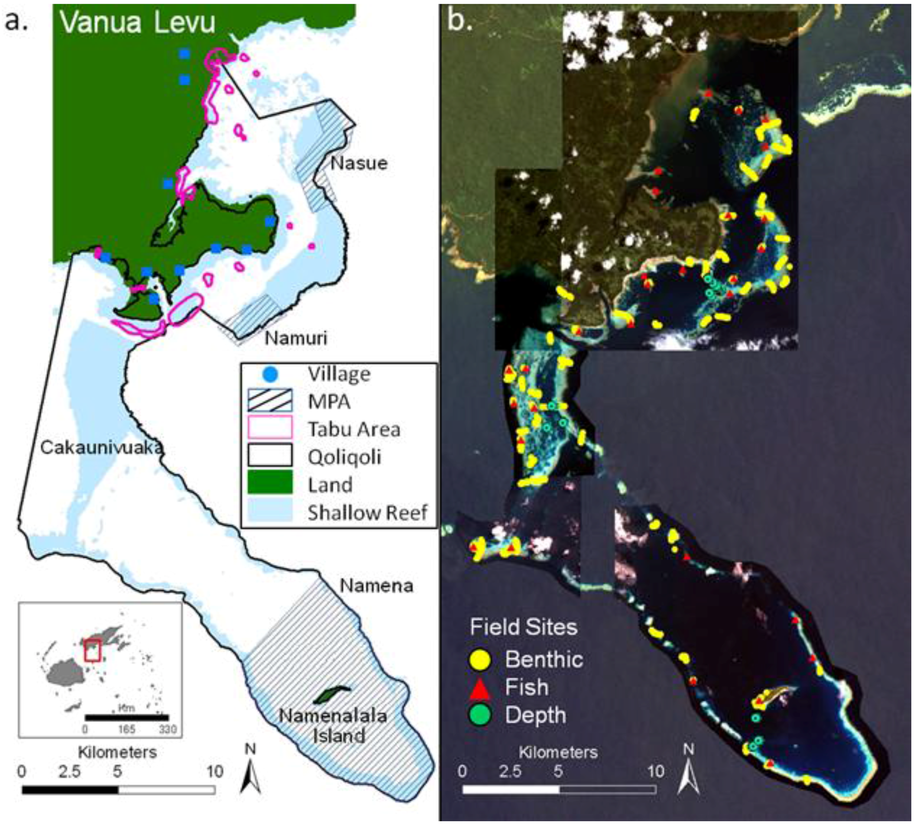 Remote Sensing Free Full Text Mapping Fish Community Variables By Integrating Field And Satellite Data Object Based Image Analysis And Modeling In A Traditional Fijian Fisheries Management Area Html