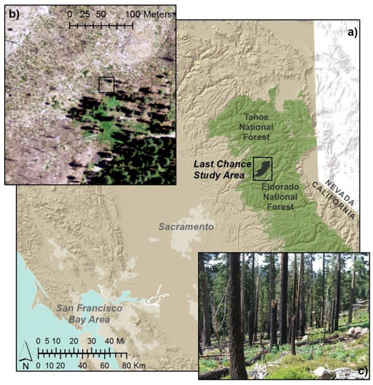 Object-Based Image Analysis of Downed Logs in Disturbed Forested Landscapes Using Lidar