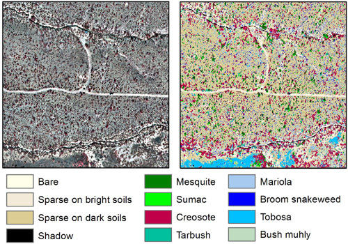 Multispectral Remote Sensing from Unmanned Aircraft: Image Processing Workflows and Applications for Rangeland Environments