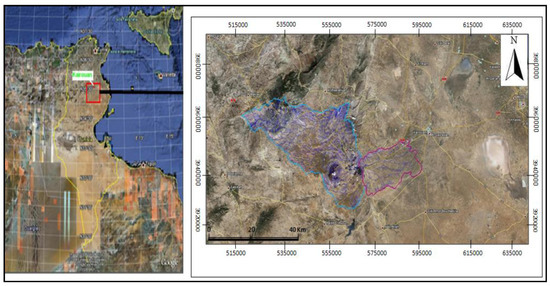 Analysis of Vegetation Behavior in a North African Semi-Arid Region, Using SPOT-VEGETATION NDVI Data