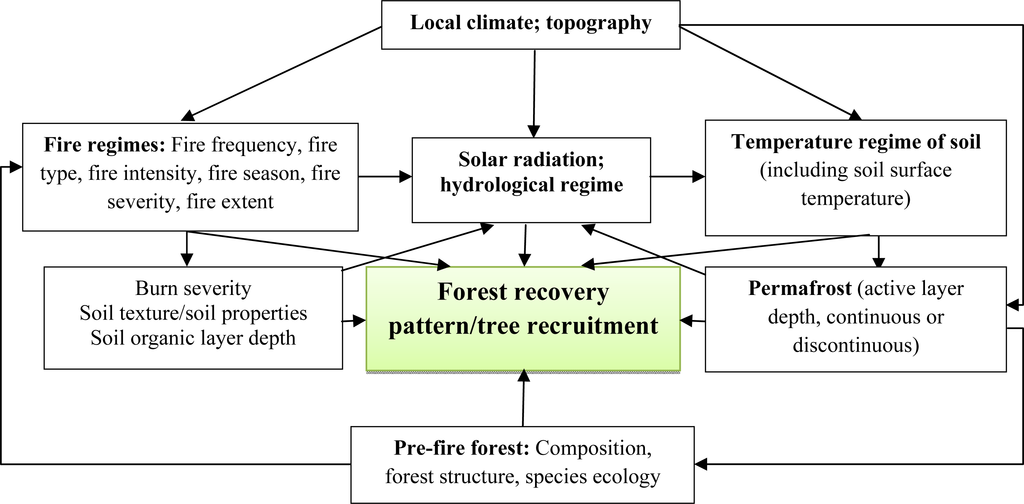 Remote Sensing Free Full Text Remote Sensing Techniques In
