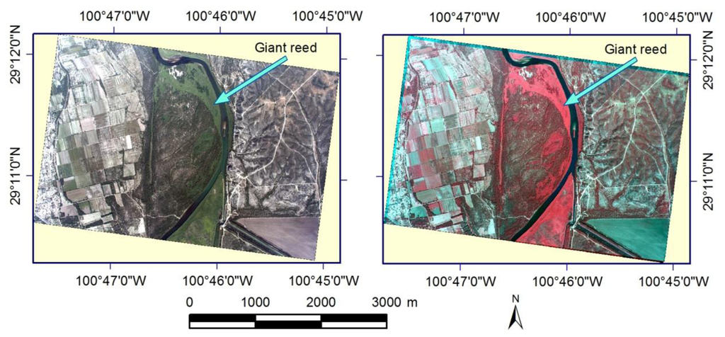 Remote Sensing Free Full Text An Airborne