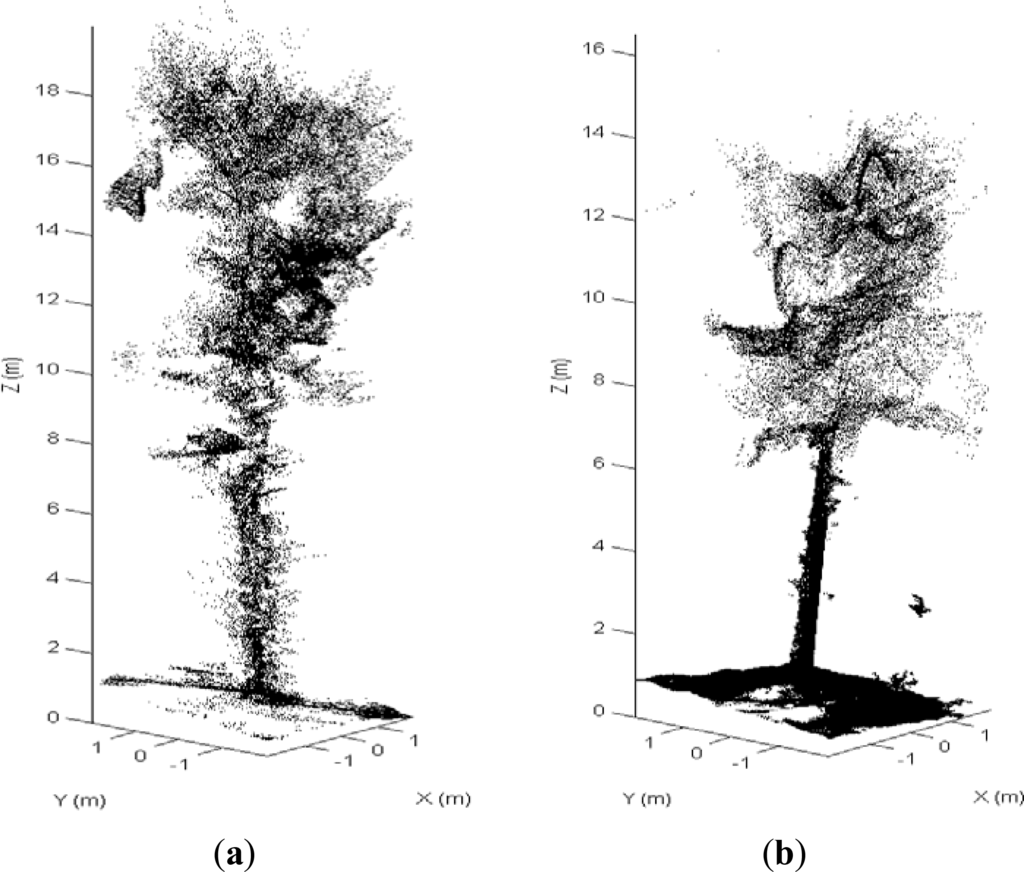 factors affecting the standing biomass of Biogeography is the study of the geographic the two most important abiotic factors affecting plant primary productivity in an annual biomass production, used.