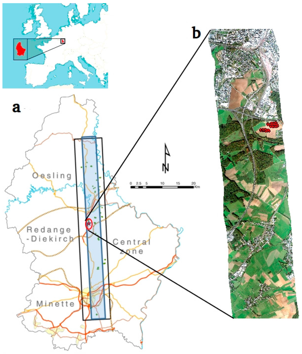Remote Sensing   July 2016 - Browse Articles