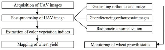 Remote Sensing   Free Full-Text   Monitoring of Wheat Growth Status