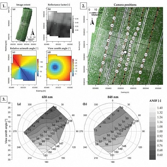 Mapping Reflectance Anisotropy of a Potato Canopy Using Aerial Images Acquired with an Unmanned Aerial Vehicle